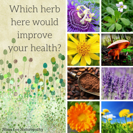 Which herb do u needfor health_ (2)